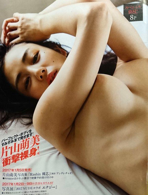 片山萌美 『Rashin 裸芯 』